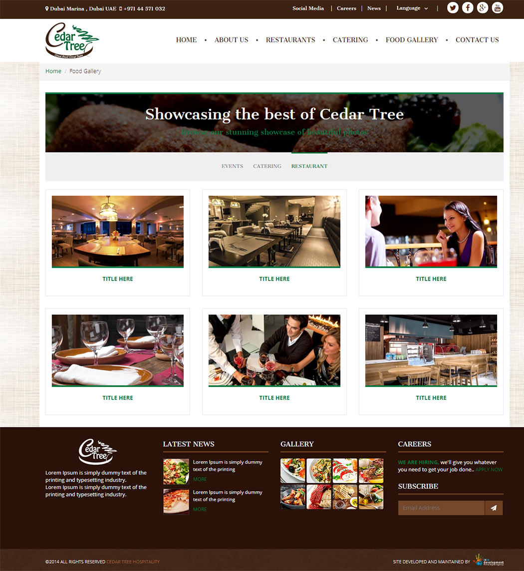 Cedar Tree-web development Egypt-web development Doha